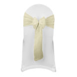 Bright Gold Sparkle Organza Sash
