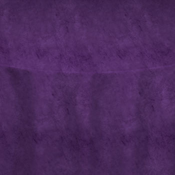 Purple Velvet Table Linen